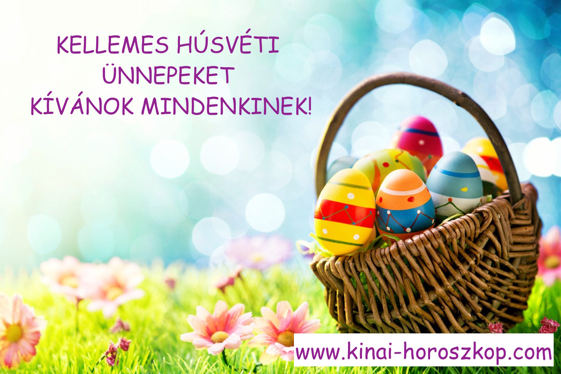 easter-basket-wallpaper-40396-41339-hd-wallpapers